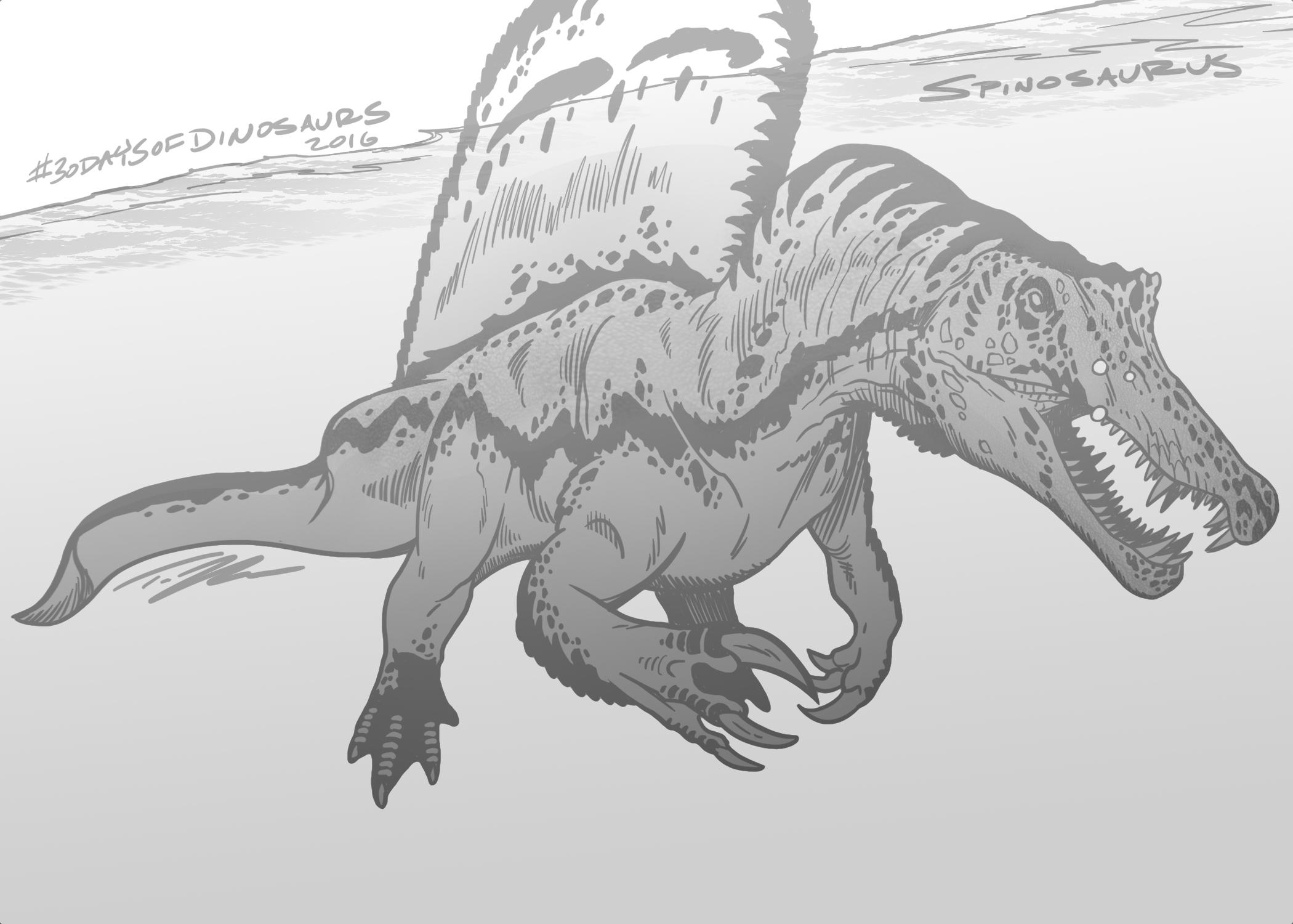 SpinosaurusTedRechlin