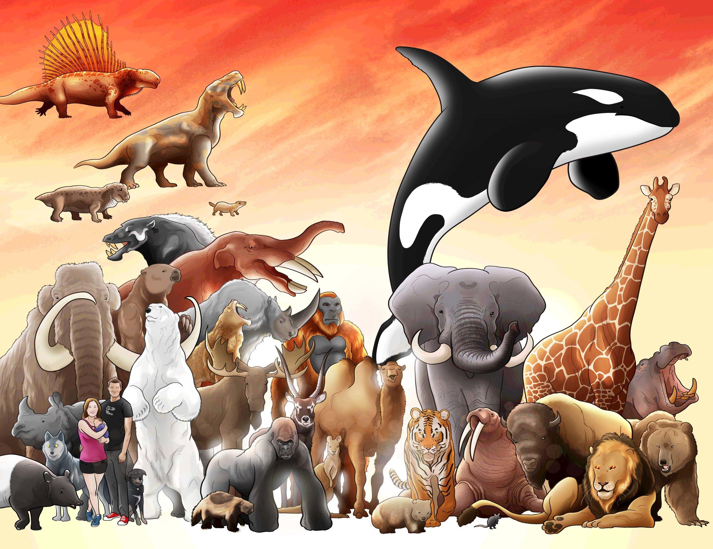 Mammals, a family tree