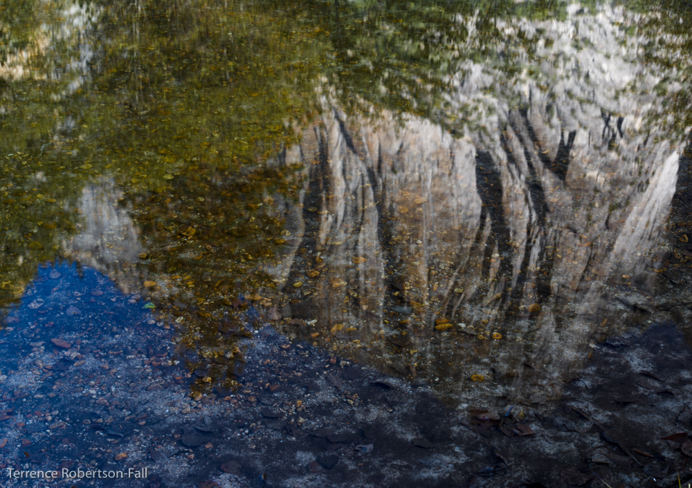 Reflection of the Three Brothers in Merced River, Yosemite National Park by Terrence Robertson-Fall