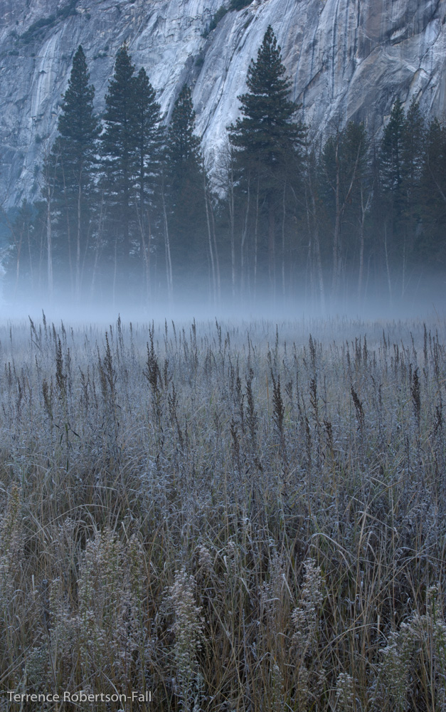 Yosemite National Park by Terrence Robertson-Fall