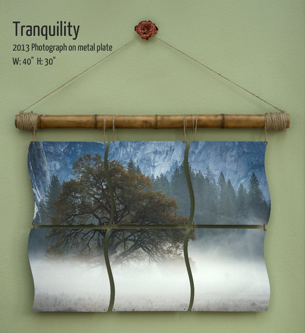 "Tranquility.  Photographic mural of an Oak Tree in Yosemite by Terrence Robertson-Fall.  40""x30""."