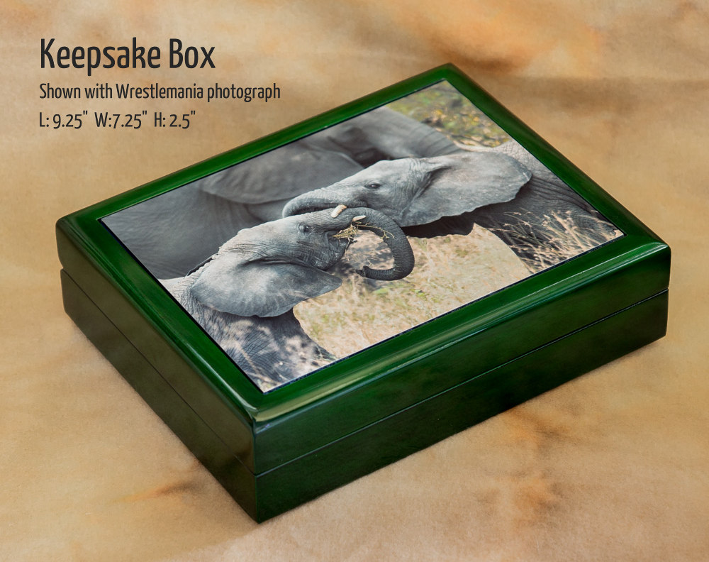 Keepsake_box_wrestlemania_by_Terrence_Robertson-Fall.jpg