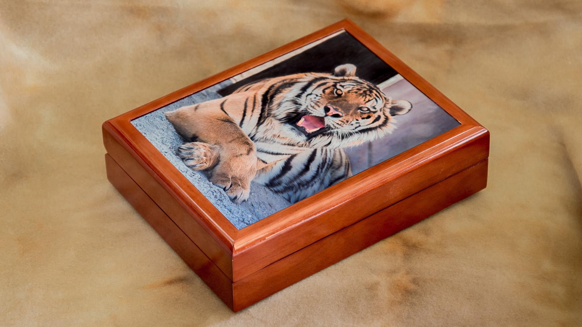 Keepsake_box_cultured_tiger_diagonal_by_Terrence_Robertson-Fall-5.jpg