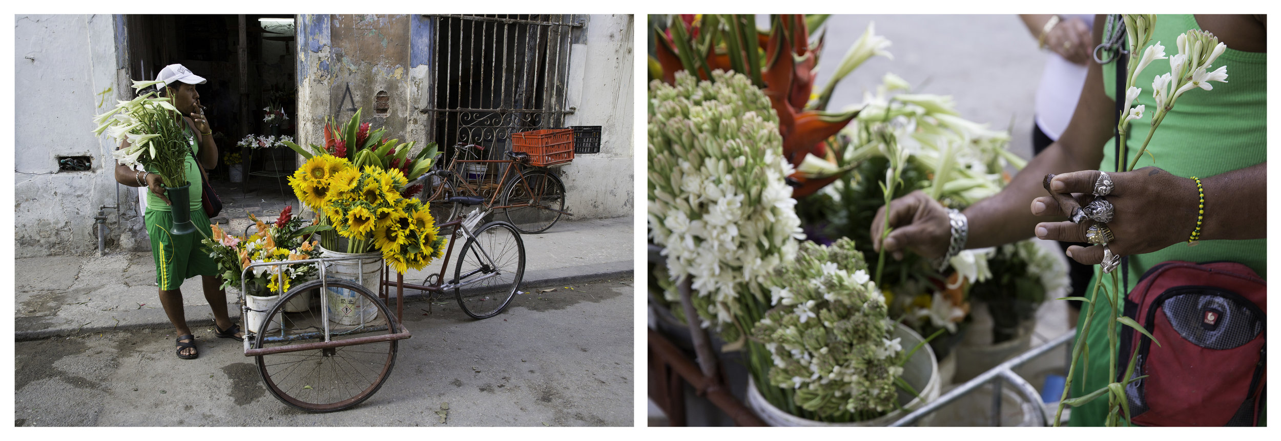 FLOWER VENDOR DIPTYCH.jpg