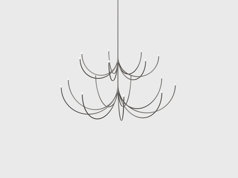 Arca : Medium ~ Large