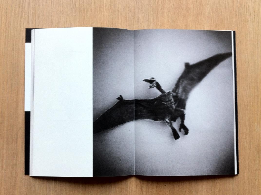 L'amoureuse by Anne De Gelas Format 20 x 28.5 cm 96 pages, Text FR + EN 550 copies, signed.