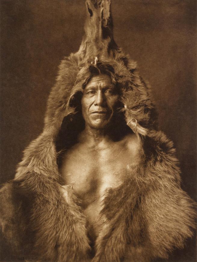 Edward S Curtis - Bear's Belly, Arikara Indian half-length portrait facing front wearing bearskin
