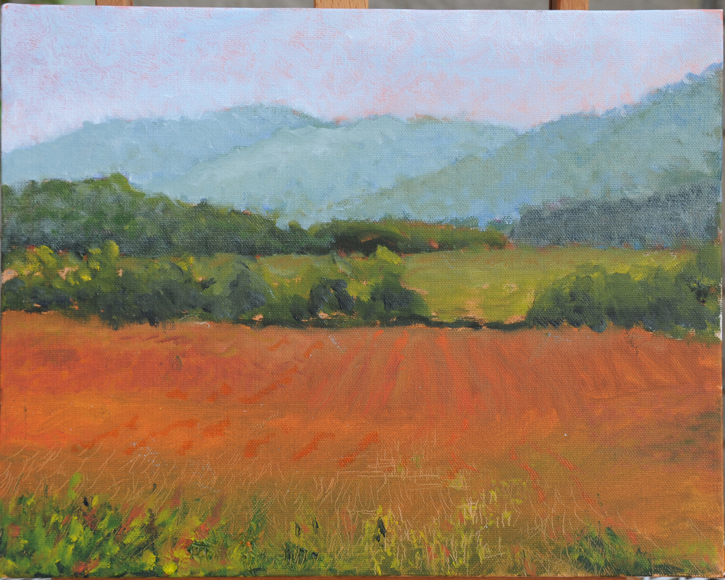 Cades Cove in Summer