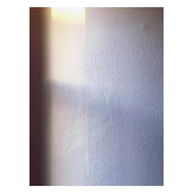 Evening light // I spend a lot of my time taking images of light as it hits various walls in our home. I've decided to start posting them. Sorry if it's dull✨ #windowlight #shadows