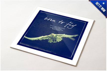 E-book-get-it-now.jpg