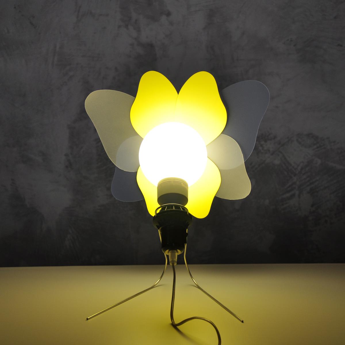 Freydenberg_Trans_Flower_Butterfly_8.jpg