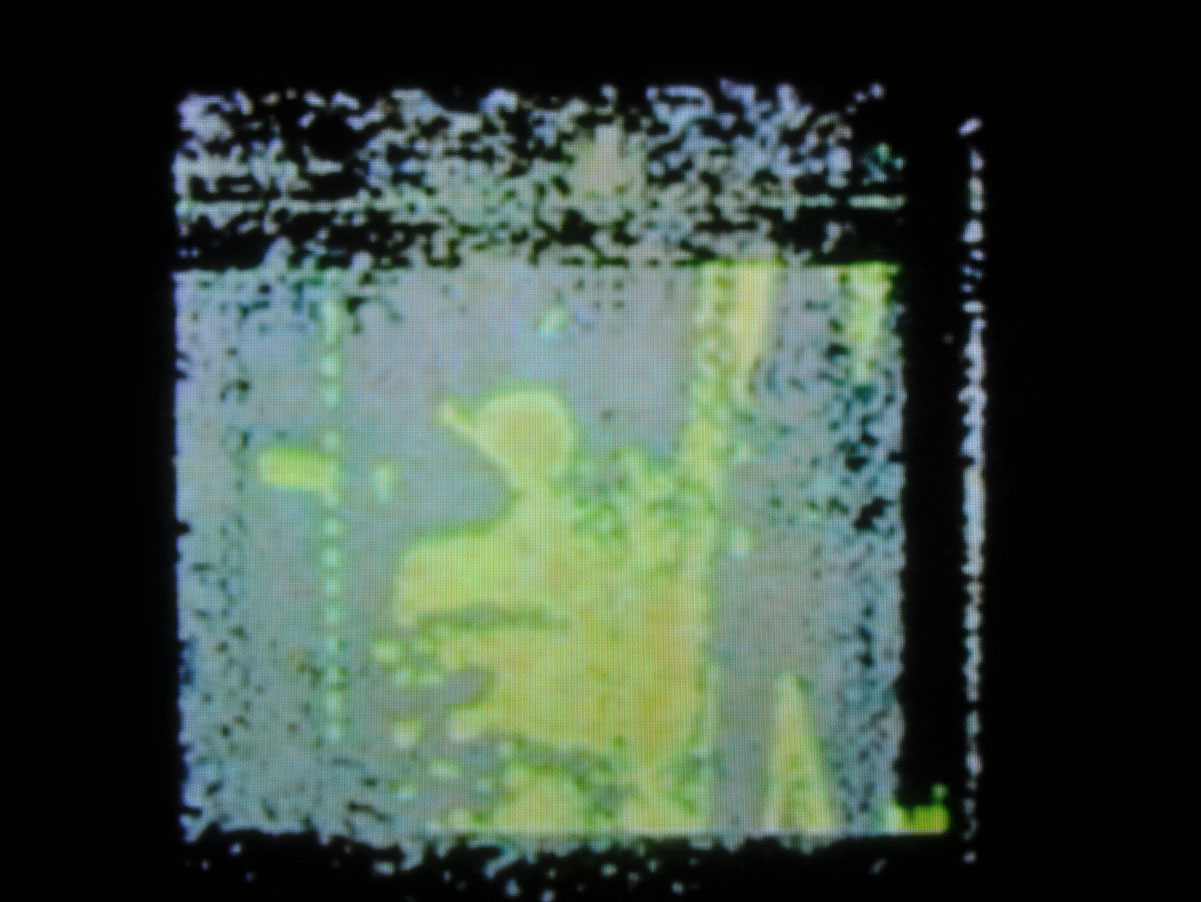 Freydenberg_Optical_Painting_9.jpg