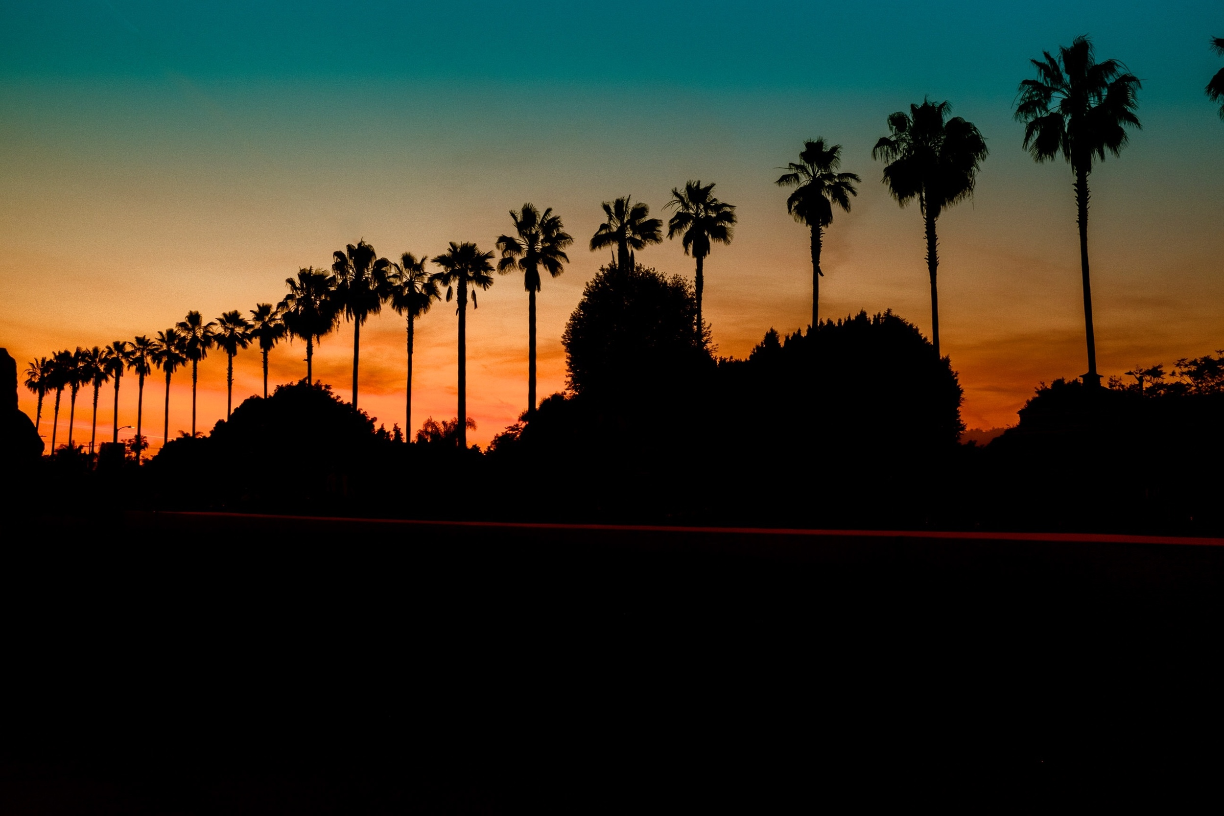 view-of-palm-trees-at-LACMA-sunset.jpg