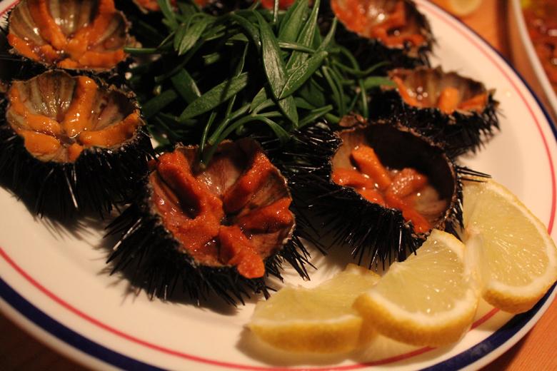 sea+urchins.jpg