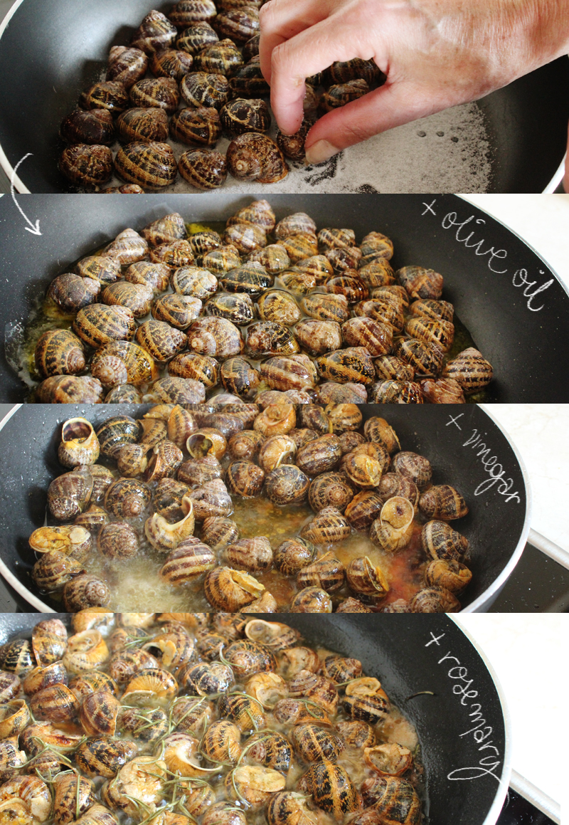 Fried+Snails+in+Olive+oil+and+rosemary-+boubouristoi++%25283%2529.jpg