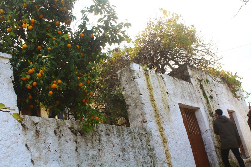 Village Amari - Crete, Αμάρι Κρήτη.jpg