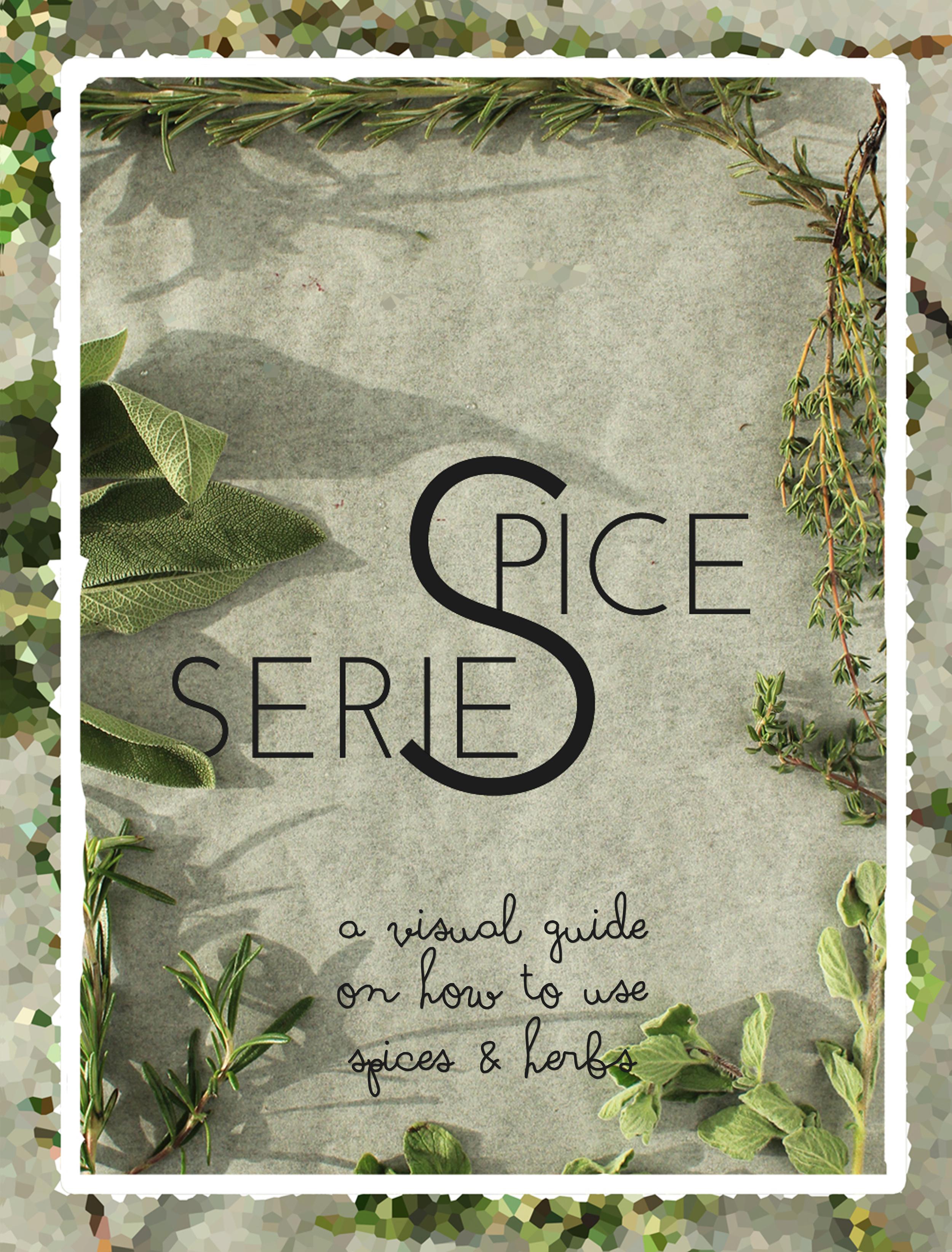 Spice Series: ένας οπτικός οδηγός για το πως να χρησιμοποιείτε τα μπαχαρικά σας | In Whirl of Inspiration