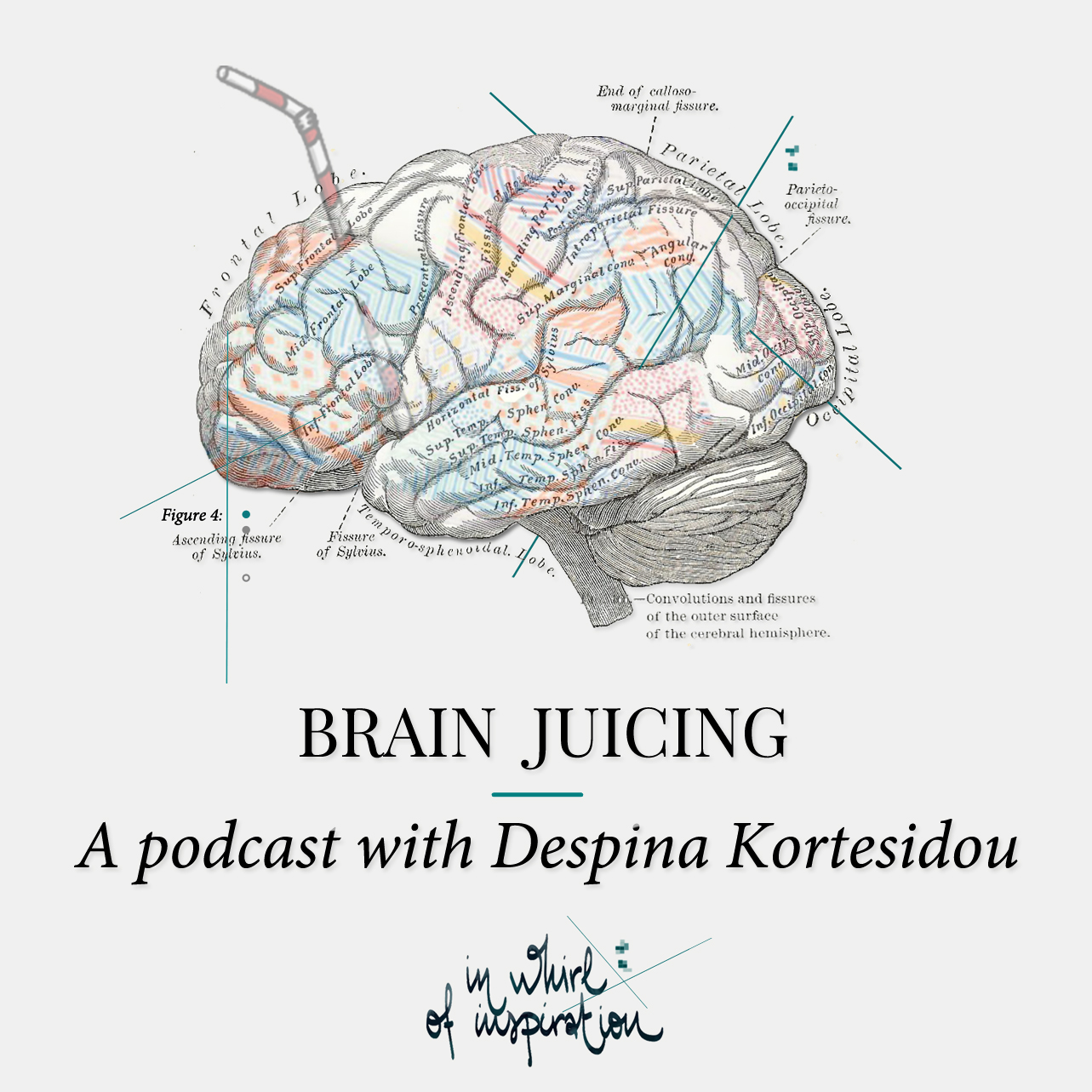 Brain Juicing the new podcast by In Whirl of Inspiration