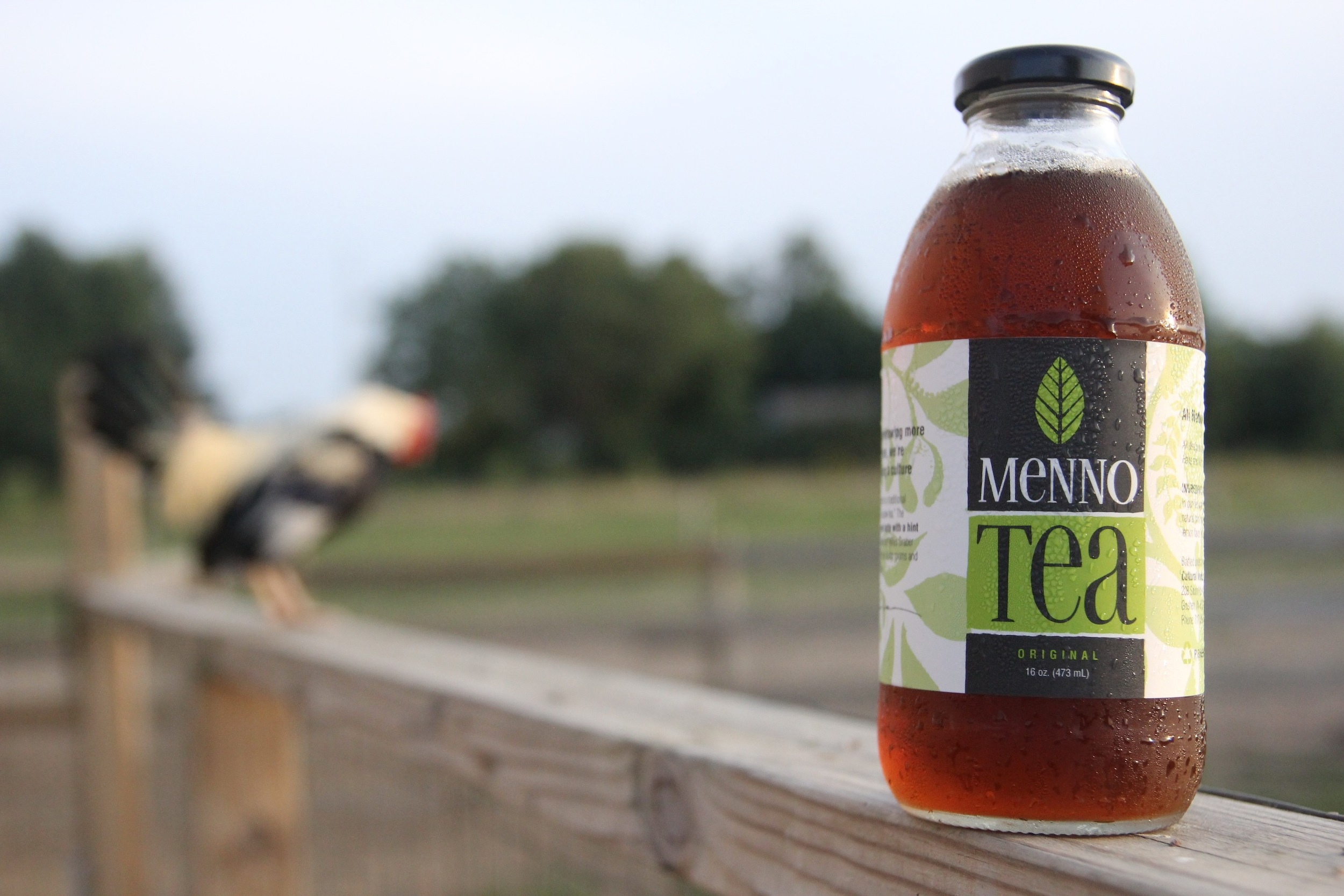 menno-tea-mint-tea-amish-mennonite-spearmint-peppermint-bottled-tea-dried-tea-hot-tea