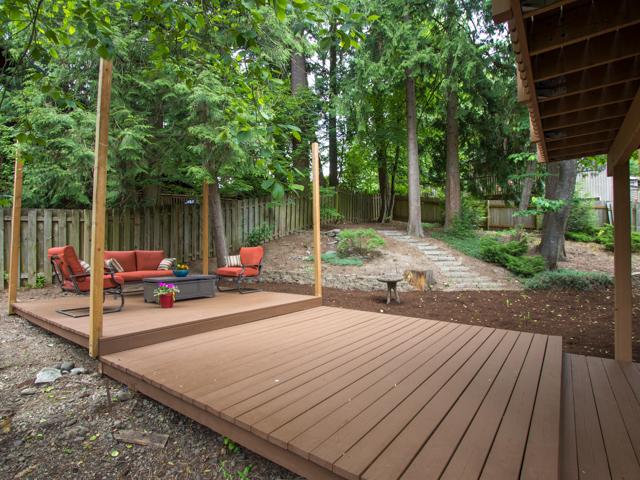 Shady Backyard.jpg