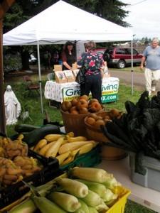 Garlic-Fest-at-Northwest-Organic-Farms-Green-Living-225x300.jpg