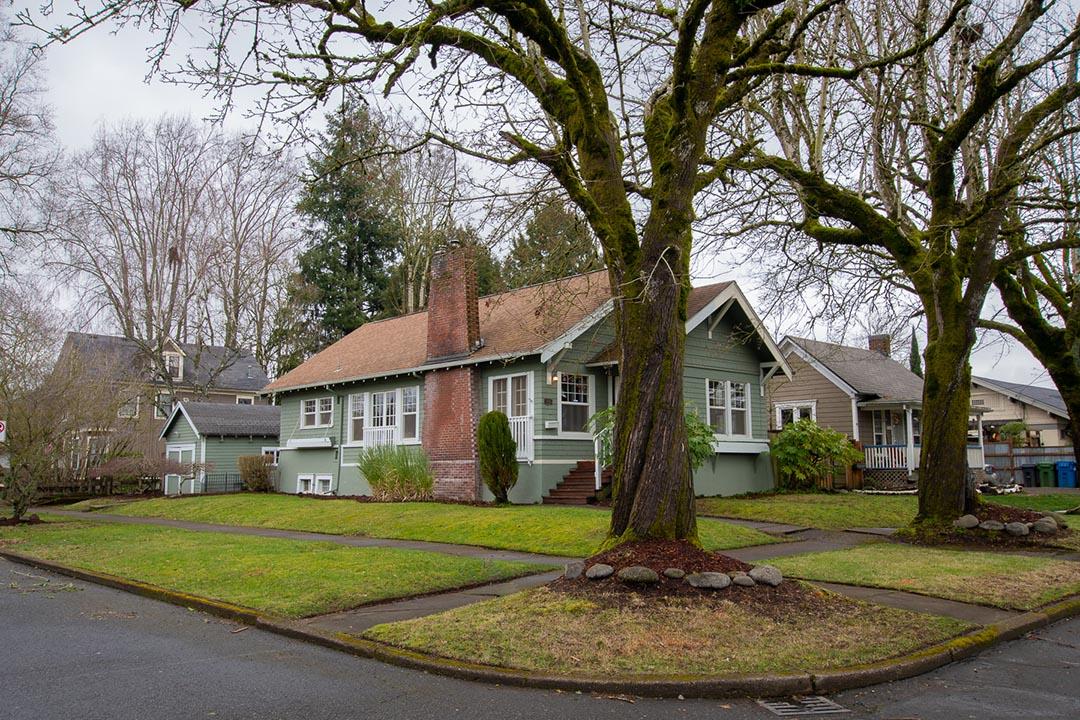 exteriorw_trees1.jpg