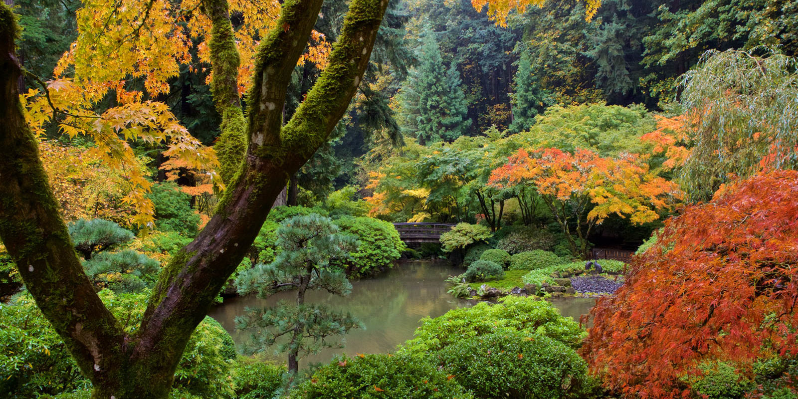 Photo credit: Portland Japanese Garden
