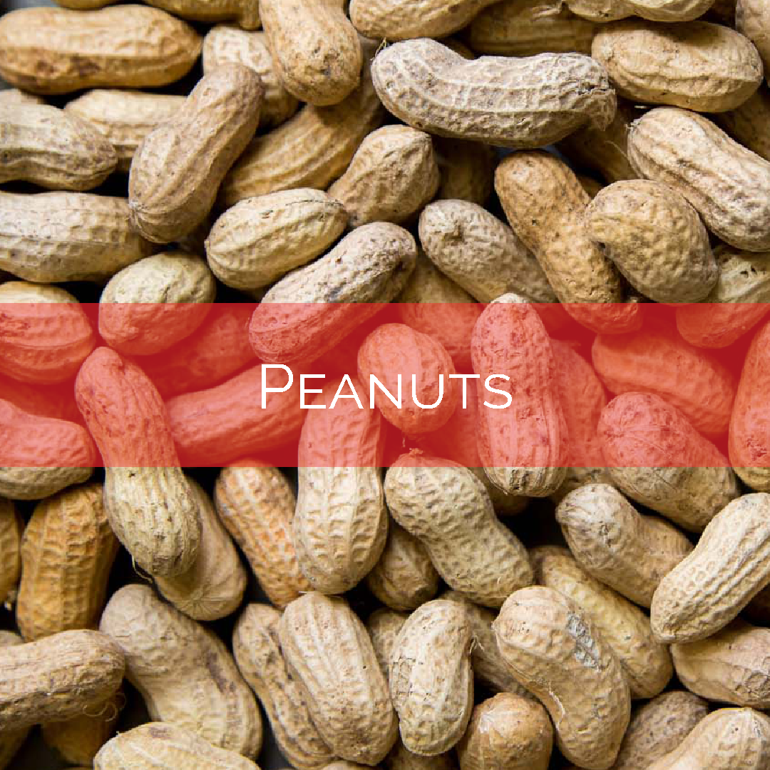 Peanuts w. banner.png