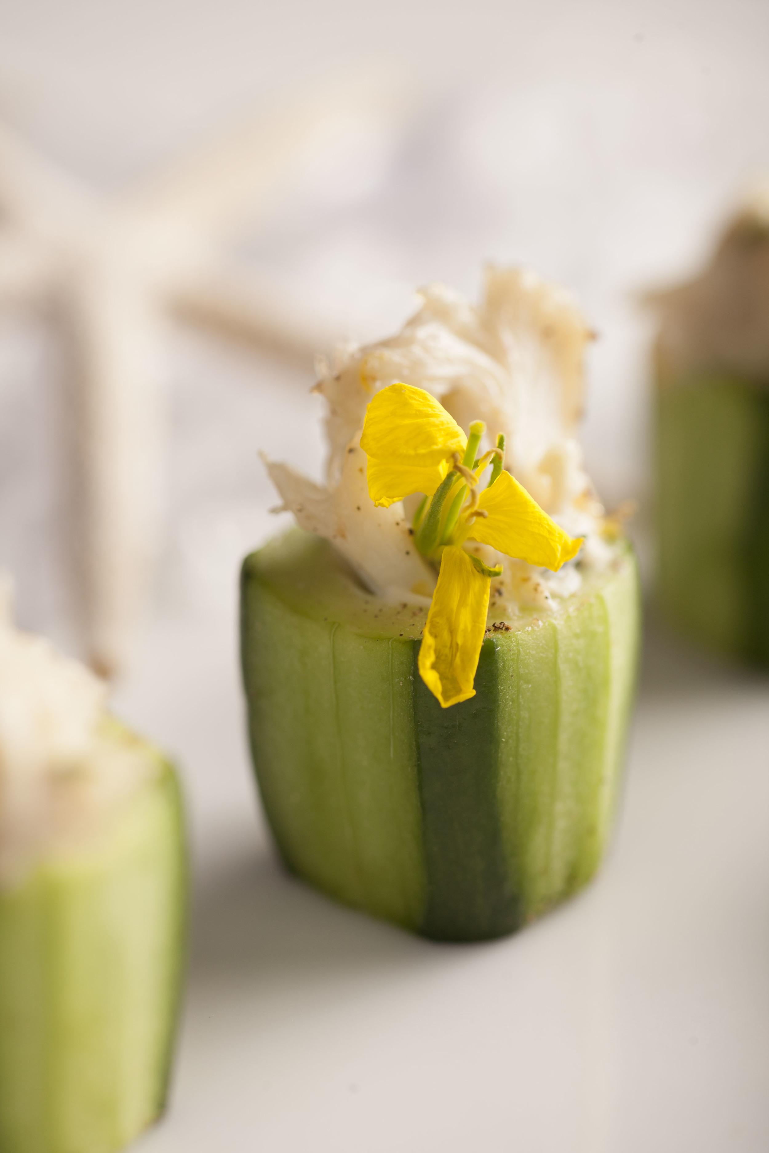 meyer lemon crab salad | persian cucumber cup