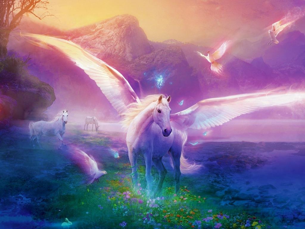 Unicorn-fantasy-31454763-1024-768.jpg