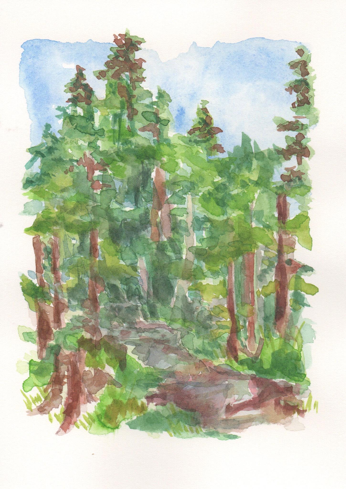 AlaskaWatercolor13.jpeg