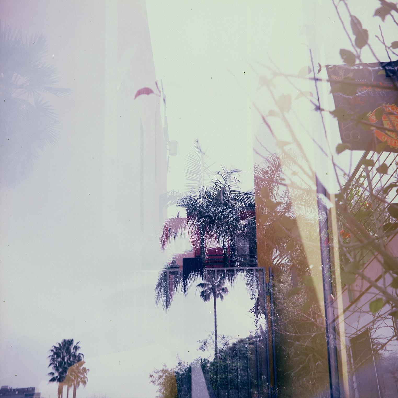 Venice Beach, LA 2010