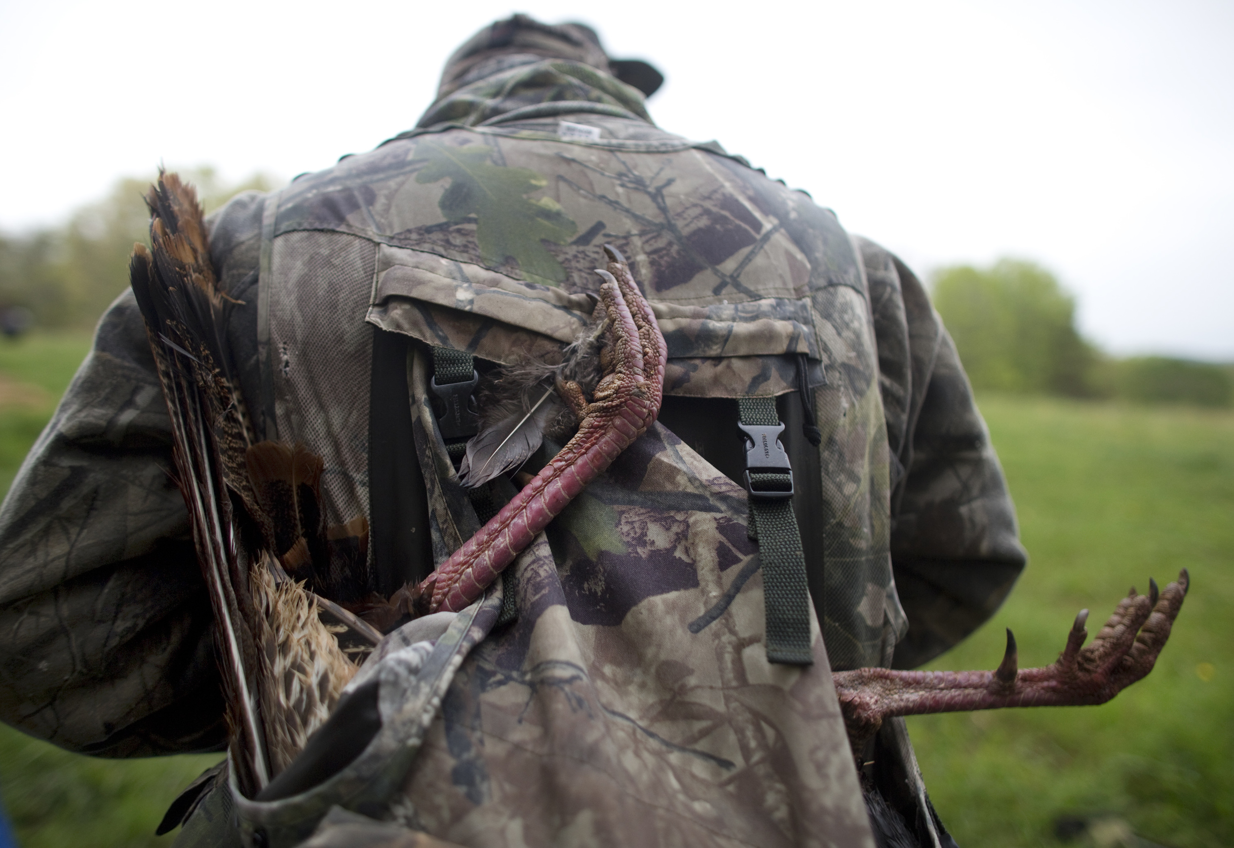 Steve Davenport packed up the gobbler into his sack to carry back to the Moose Lodge.
