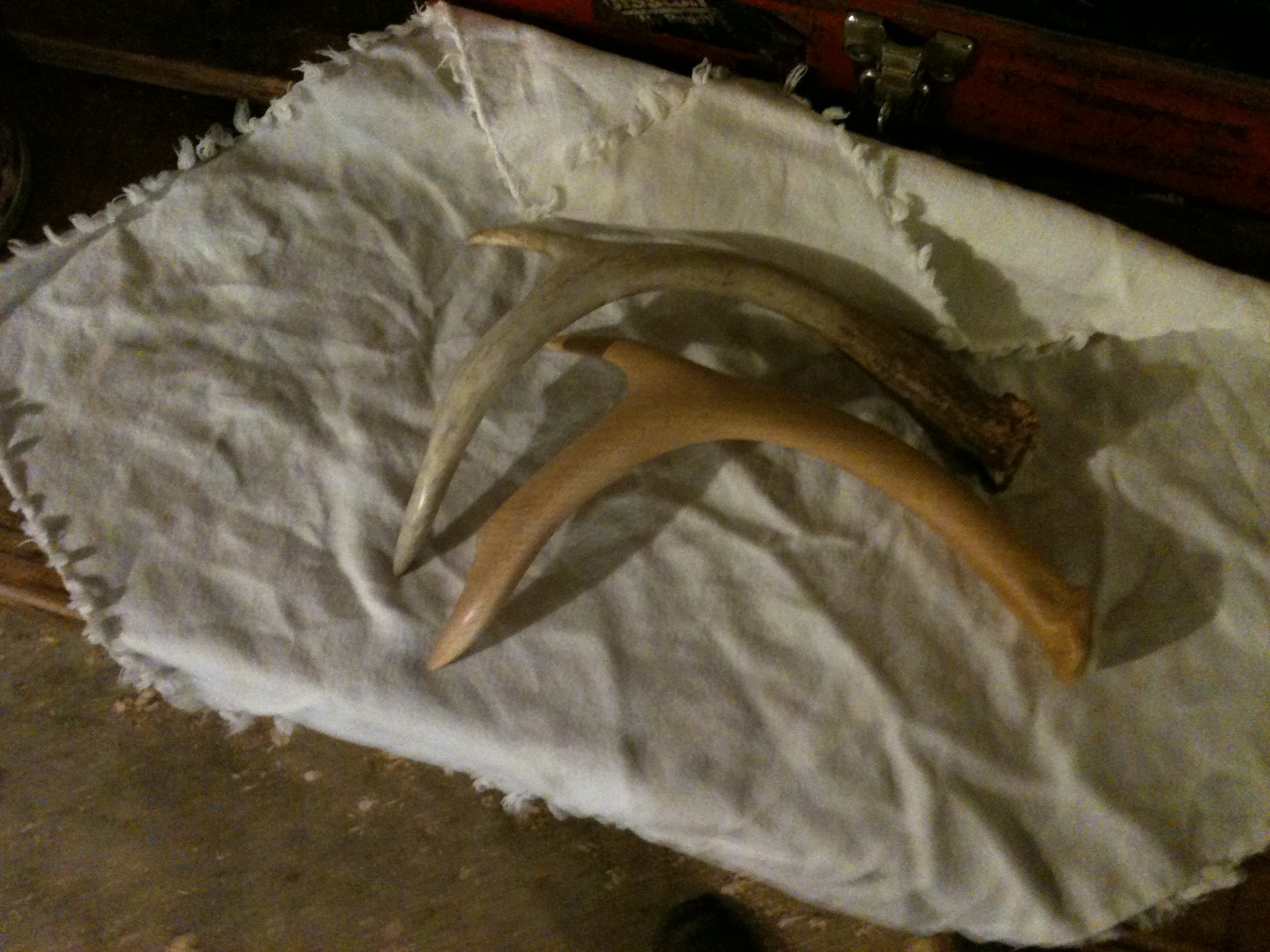 Replica in birch and tagua nut of a spritually important antler