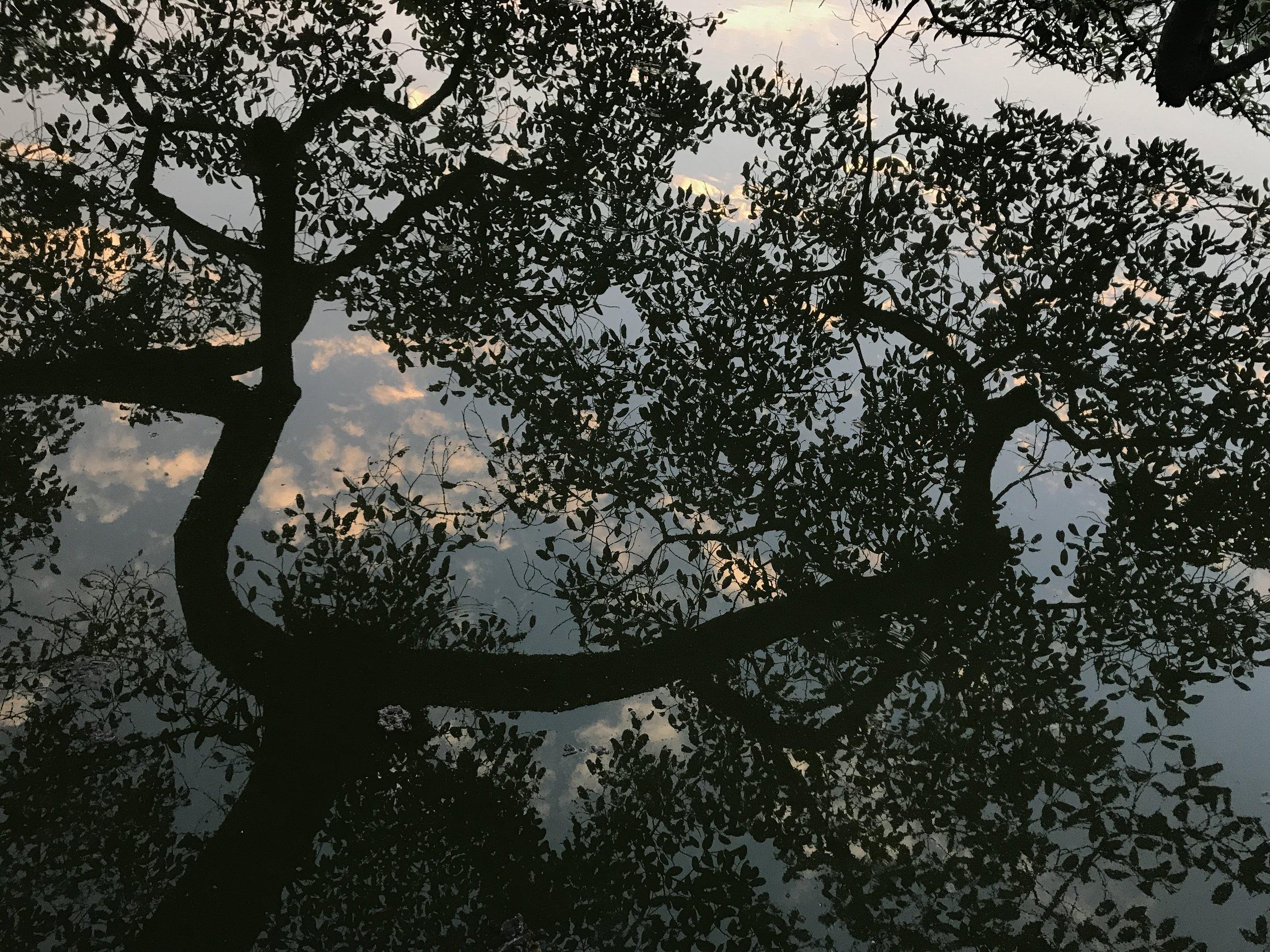 还剑湖,河内,越南。摄影/陈慧莹