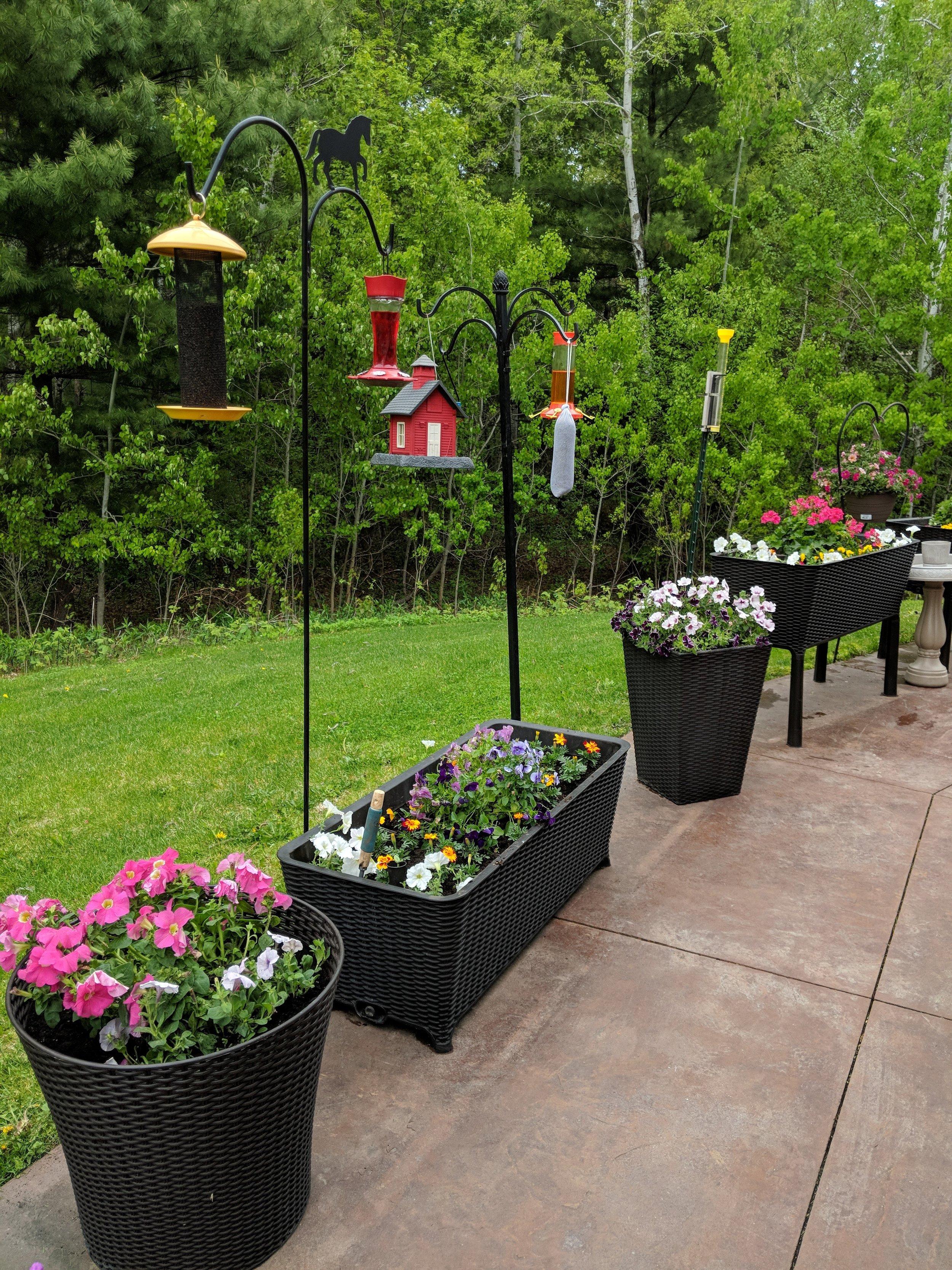 Flower Planting 2019! 4.jpg