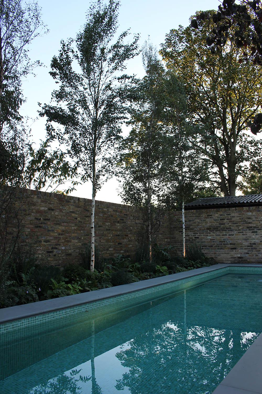 ealing-west-london-garden-turquoise-lap-pool.jpg