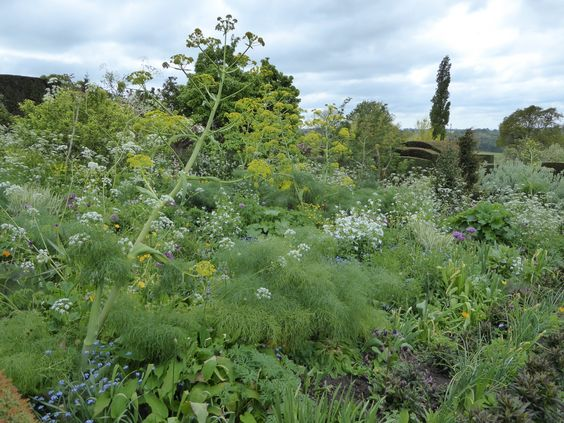 great-dixter-naturalistic-planting-dreamy.jpg