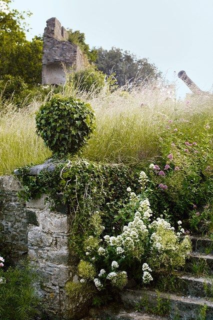 isabel-julian-bannerman-wild-naturalistic-country-garden.jpg