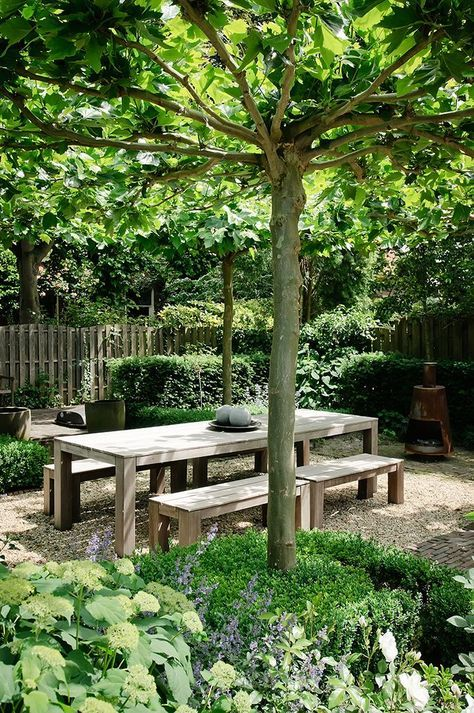 courtyard-sheltered-garden-green-dining.jpg