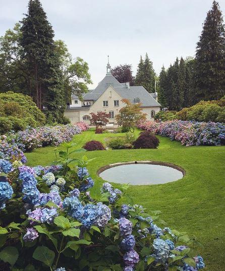blue-hydrangeas-circular-pool-large-country-garden.JPG