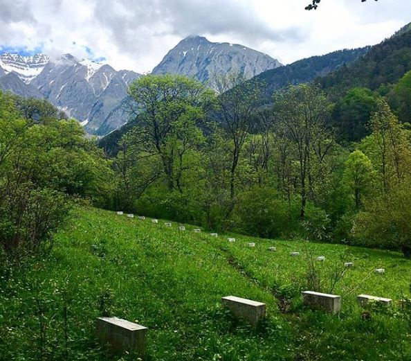 richard-nonas-viere-land-art-sloping-landscape.JPG