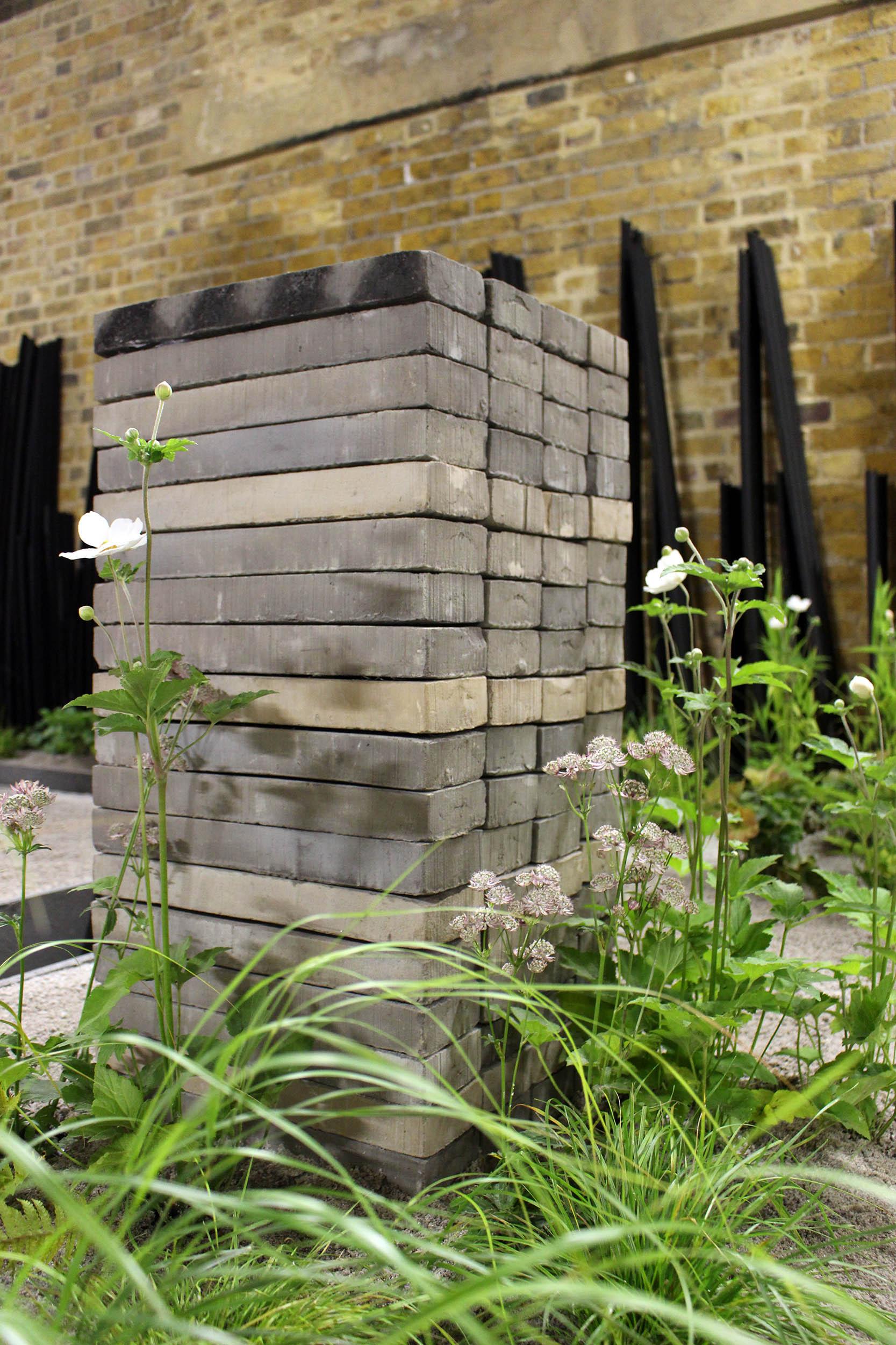 london-bridge-garden-shade-astrantia-anemone.jpg