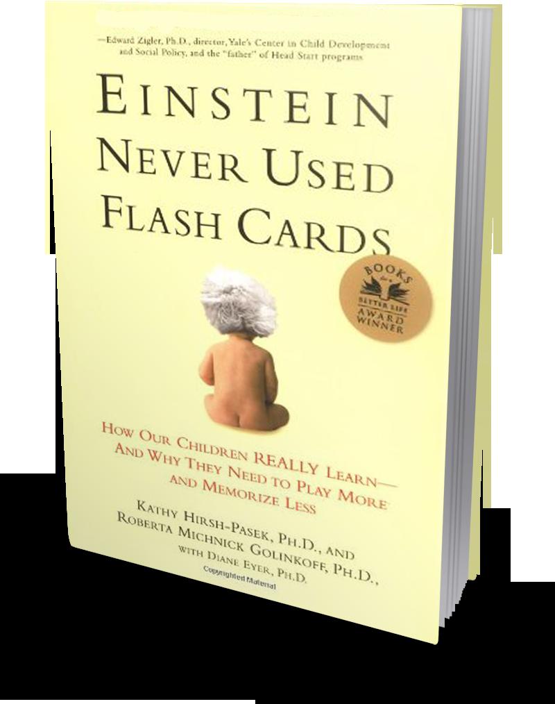 EinsteinNeverUsedFlashCards-3dLeft.png