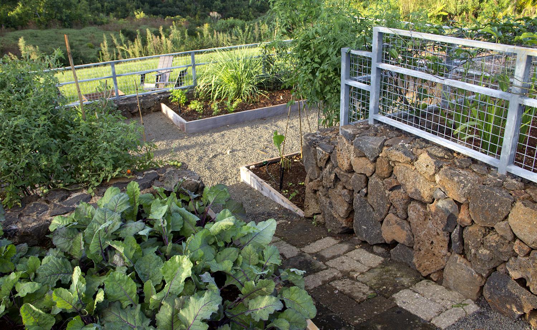hut-house-vegetable-garden-1.jpg