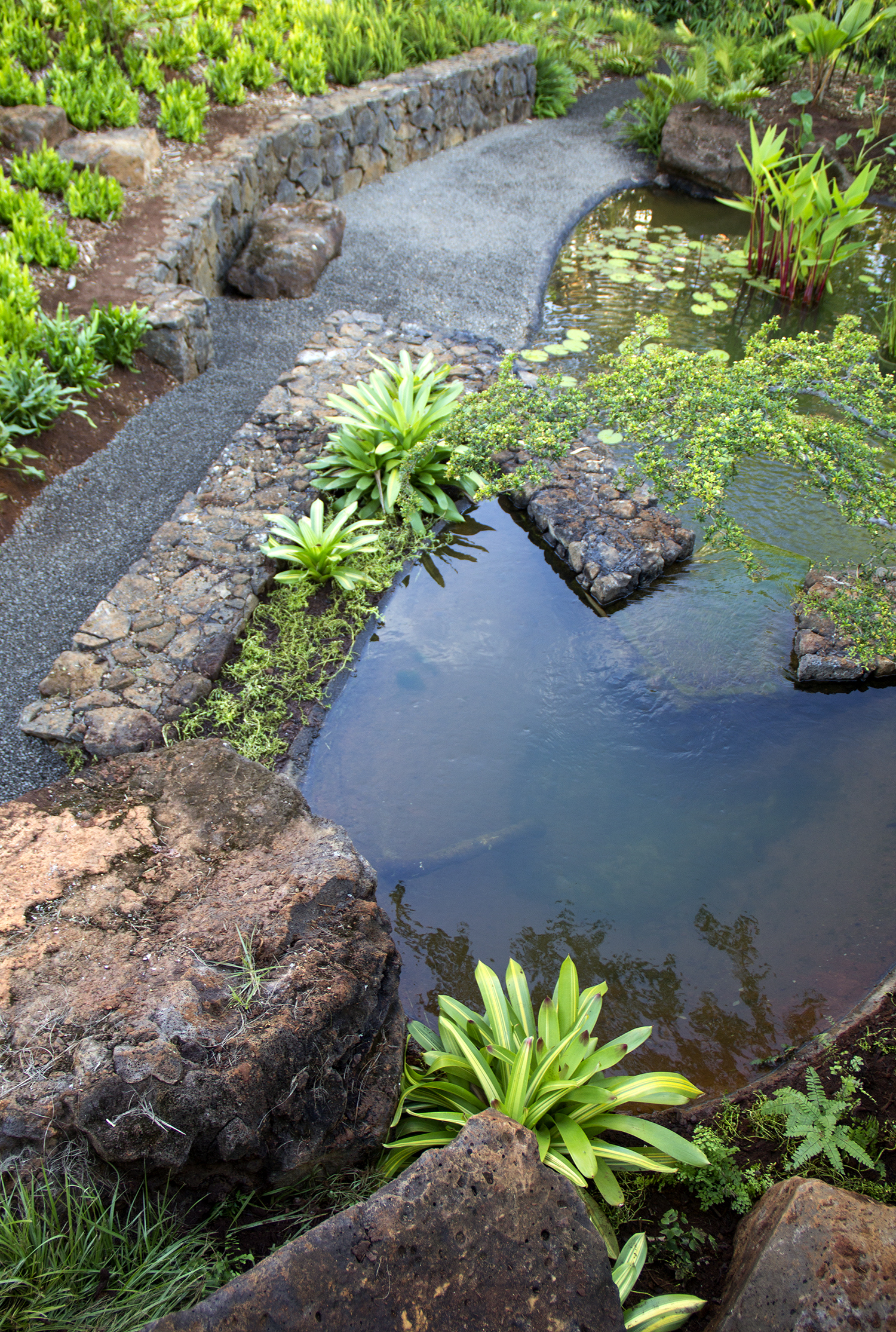 hut-house-water-garden-4.jpg