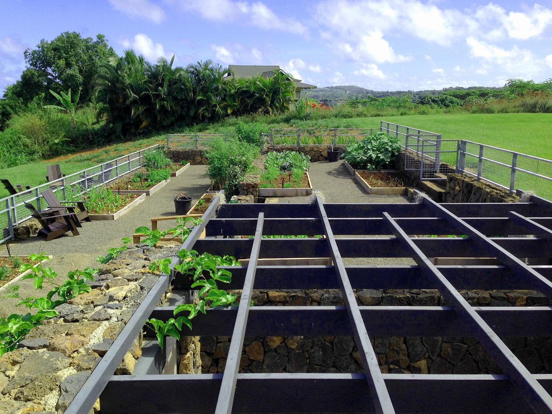 hut-house-vegetable-garden-3.jpg
