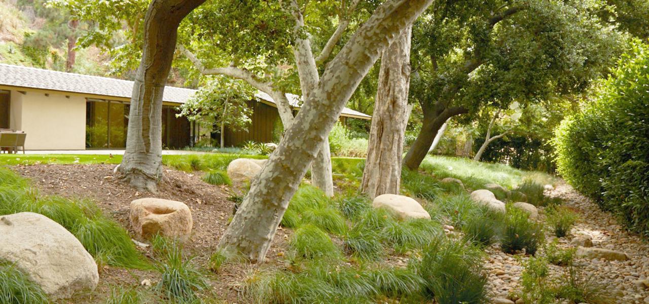 old-oak-ranch-1.jpg