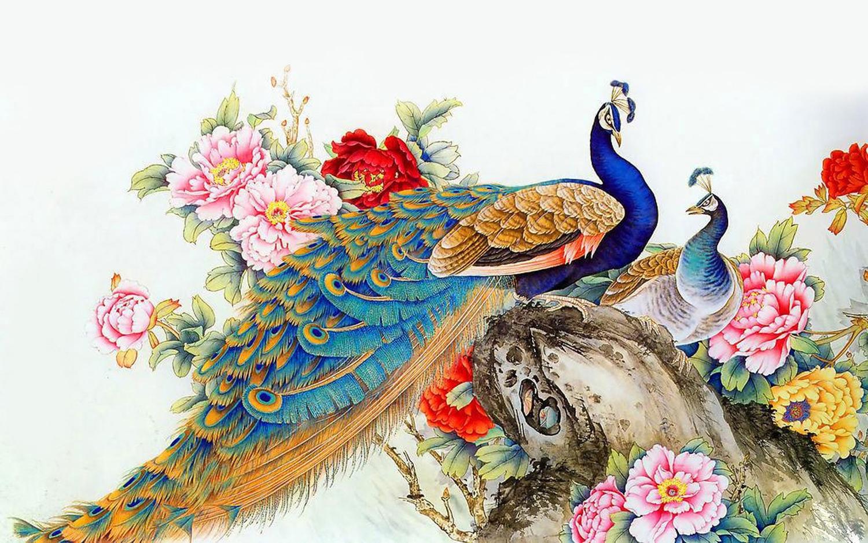 Peacock-Wallpaper-Free-Download.jpg