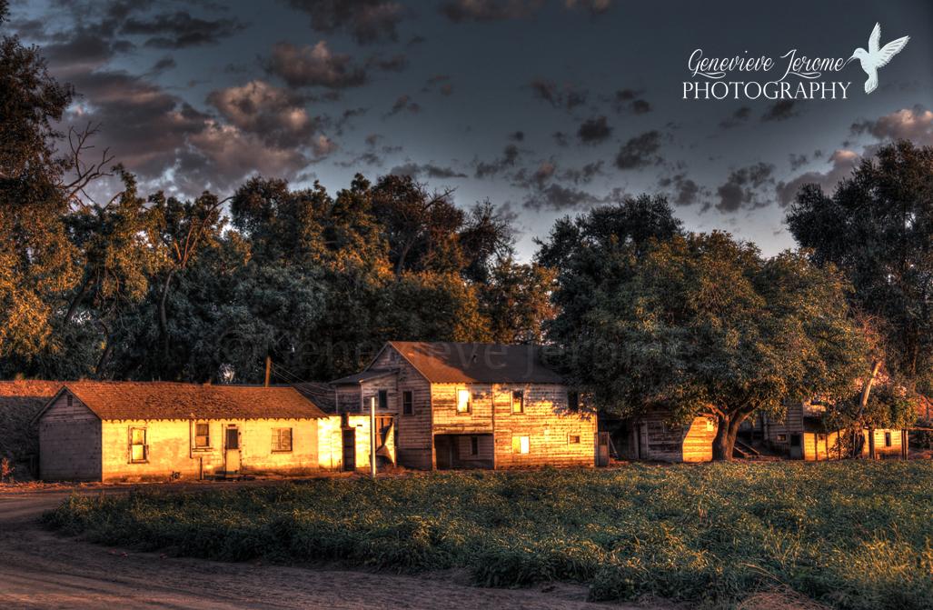 © Genevieve Jerome Photography 2013